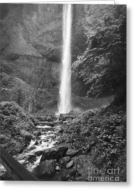 Latourelle Falls 10 Greeting Card by Rich Collins