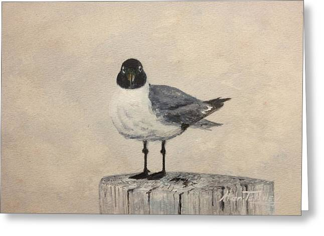 Greeting Card featuring the painting Laughing Gull by Stan Tenney