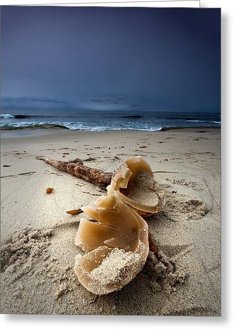 Laughing With A Mouth Full Of Sand Greeting Card by Peter Tellone