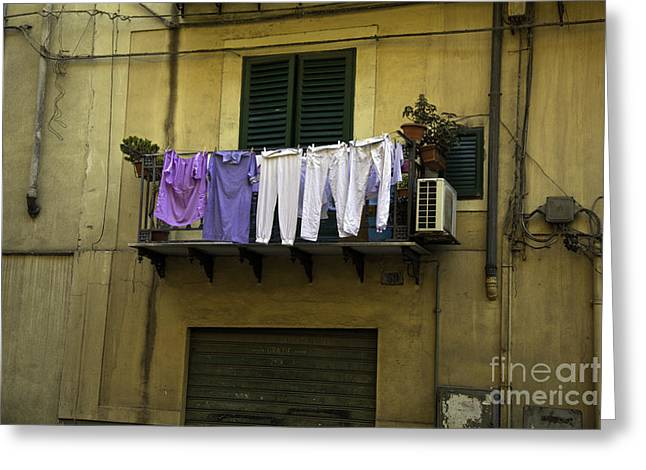 Laundry Day Greeting Card by Madeline Ellis