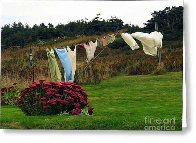 Laundry Greeting Card