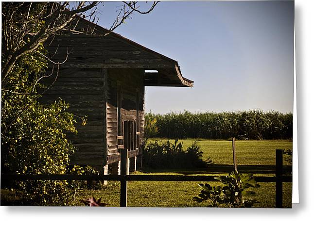 Greeting Card featuring the photograph Laura Plantation Slave Home by Ray Devlin