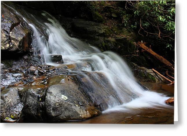 Laurel Falls Great Smoky Mountains Greeting Card by Jerome Lynch