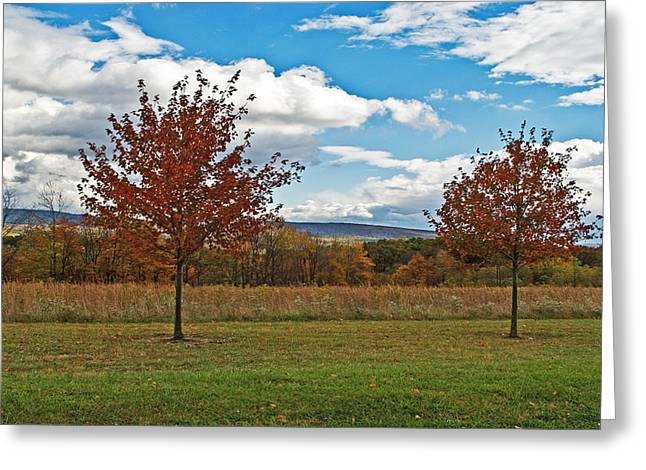 Greeting Card featuring the photograph Laurel Hills In The Fall Lan 220 by G L Sarti