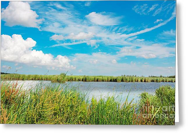 Lauwersmeer National Park. Greeting Card