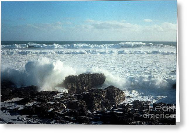 Lava Beach Rocks On 90 Mile Beach Greeting Card by Mark Dodd
