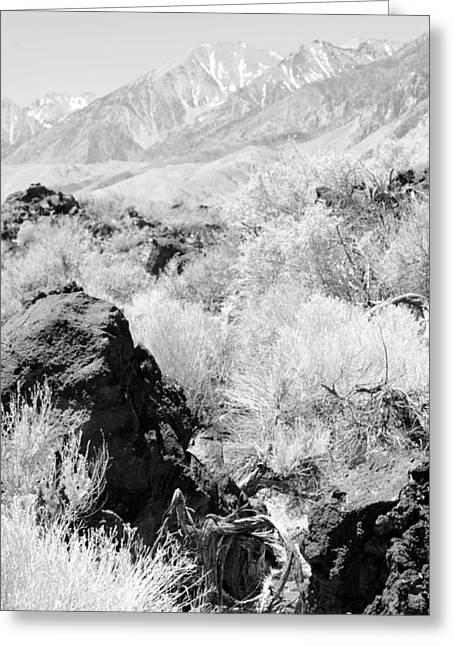 Lava Outcrop-white Mountains Greeting Card by Harold E McCray