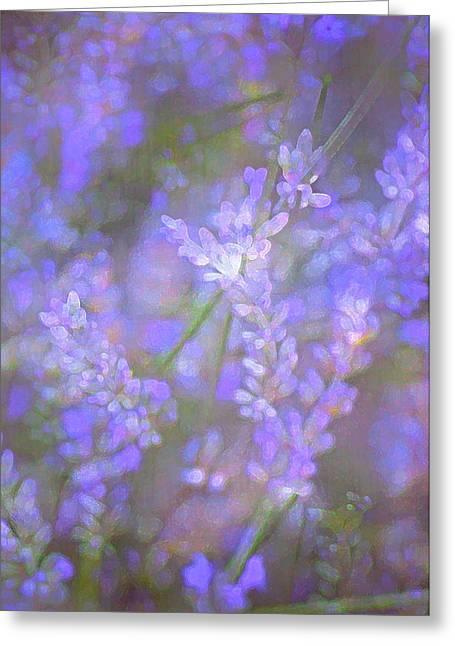 Lavender 5 Greeting Card