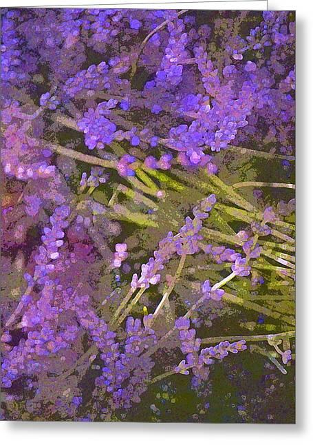 Lavender 6 Greeting Card by Pamela Cooper