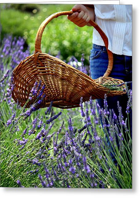 Lavender And Basket Greeting Card