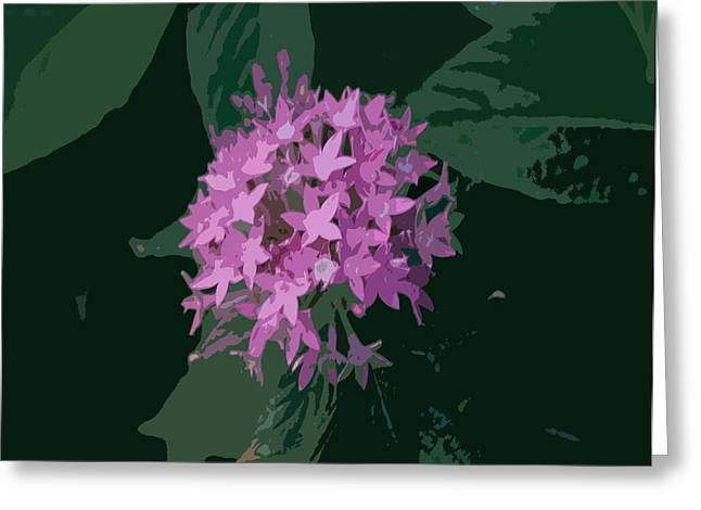 Lavender And Green Pla 369 Greeting Card