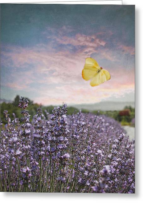 Lavender Field Pink And Blue Sunset And Yellow Butterfly Greeting Card by Brooke T Ryan