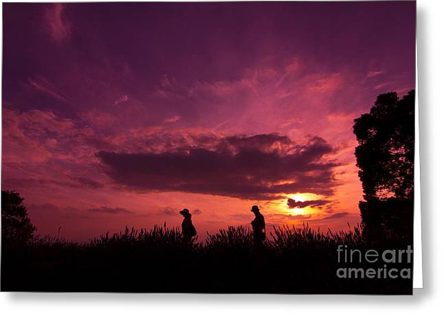 Lavender Field Sunset At Kuki In Saitama Greeting Card by Beverly Claire Kaiya