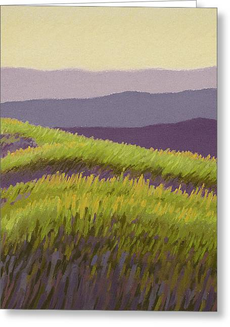 Lavender Hills Forever Greeting Card by Bruce Richardson