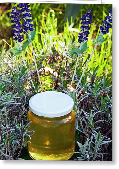 Lavender Honey In Jar And Lavender Plant Greeting Card by Nico Tondini