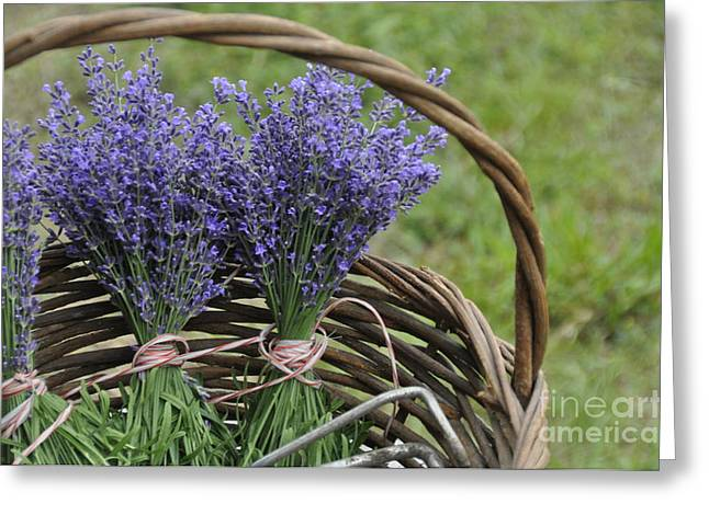 Greeting Card featuring the photograph Lavender In A Basket by Cheryl McClure