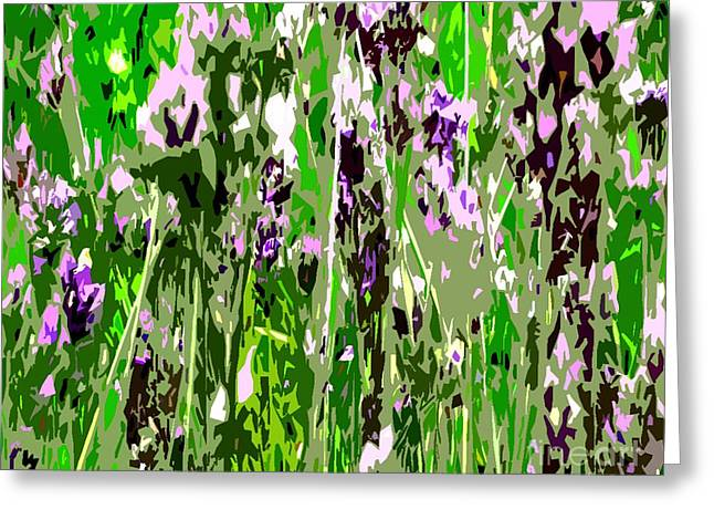 Lavender In Summer Greeting Card by Patrick J Murphy