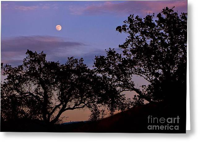 Lavender Moon Twilight Greeting Card