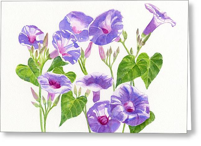 Lavender Morning Glory Flowers Greeting Card by Sharon Freeman