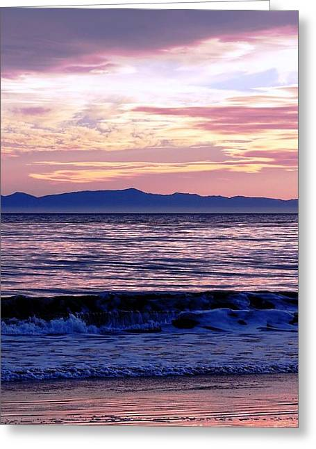 Greeting Card featuring the photograph Lavender Sea by Sue Halstenberg