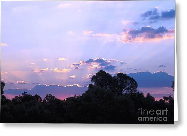 Lavender Sunrise Greeting Card