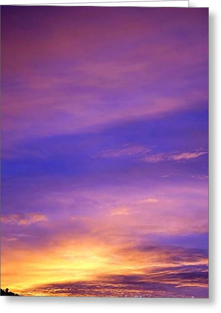 Greeting Card featuring the photograph Lavender Sunrise by Sue Halstenberg