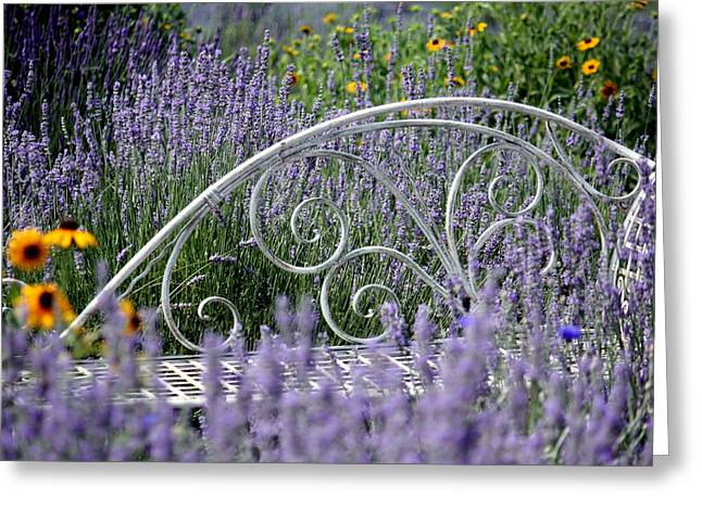 Lavender With Scrolled Settee Greeting Card