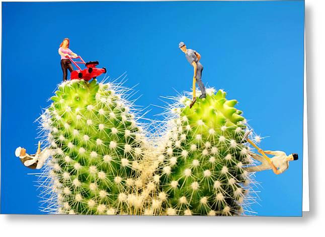 Lawn Mowing On Cactus II Greeting Card by Paul Ge