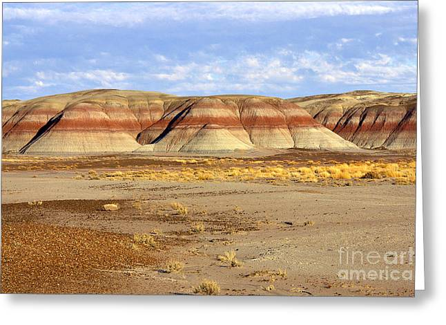 Layers And Landform - The Painted Desert Greeting Card by Douglas Taylor