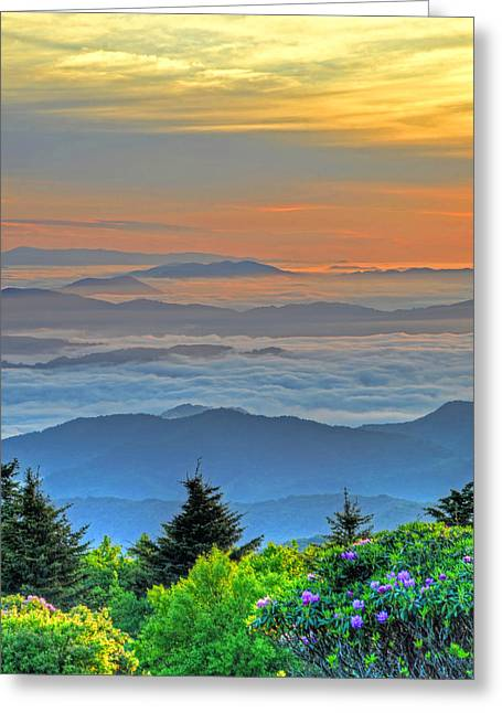 Layers Of Sunrise Greeting Card by Mary Anne Baker