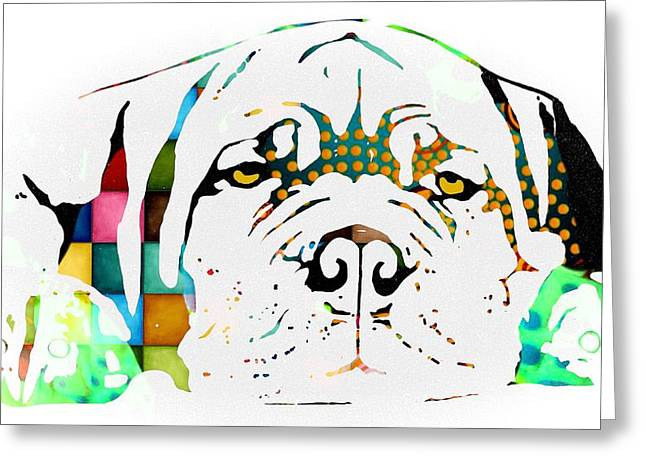 Lazy Dog With Color Greeting Card by Cindy Edwards