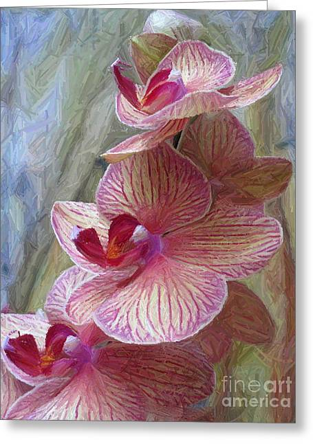 Le Trio Greeting Card by Maureen J Haldeman