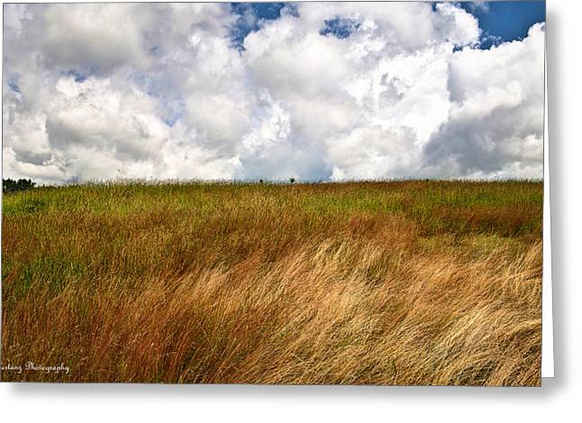 Leaden Clouds Over Field Greeting Card by Deborah Klubertanz