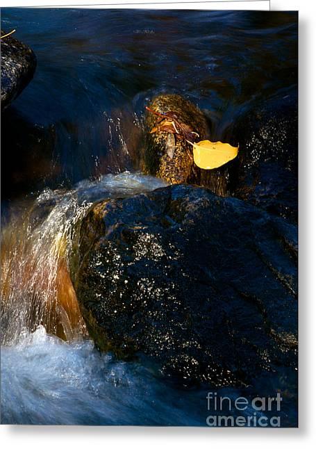 Leaf Bridge Two Greeting Card by Vinnie Oakes