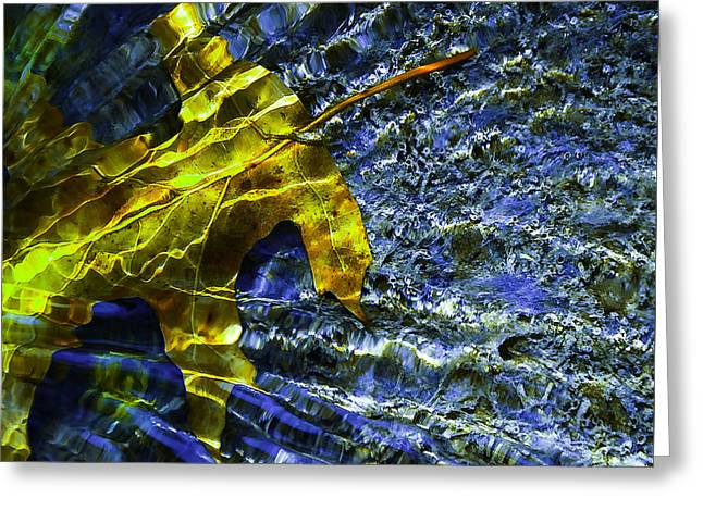 Leaf In Creek - Blue Abstract Greeting Card by Darryl Dalton