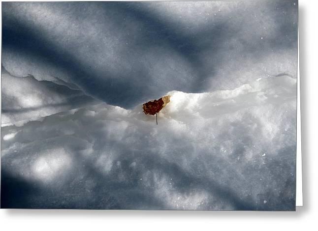 Leaf In Winter Landscape Greeting Card by Carolyn Reinhart