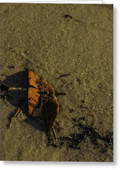 Leaf Greeting Card by Jennifer Burley