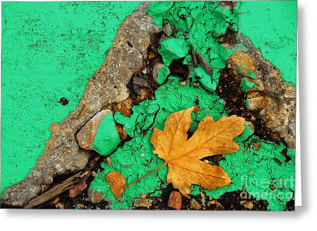 Leaf On Green Cement Greeting Card by Amy Cicconi