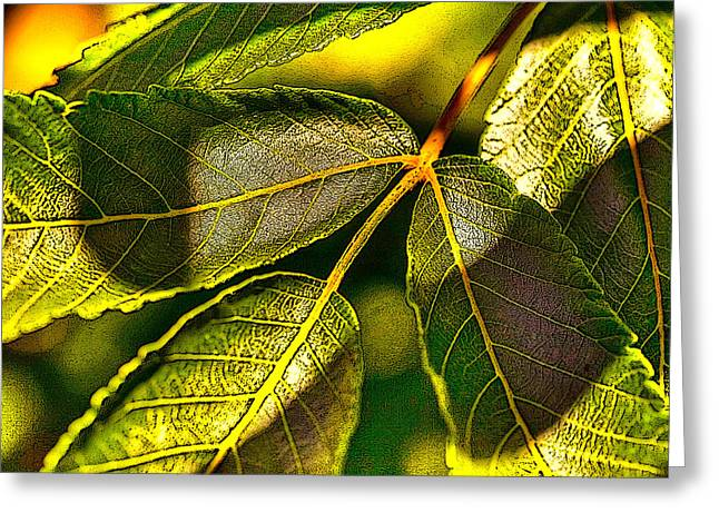 Leaf Texture Greeting Card