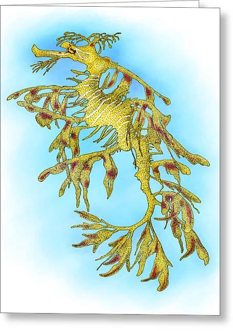 Leafy Sea Dragon Greeting Card by Roger Hall