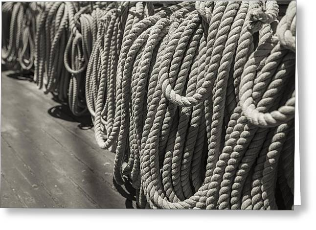 League Of Rope Black And White Sepia Greeting Card by Scott Campbell