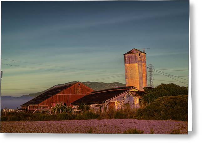 Leaning Silo  Greeting Card by Bill Gallagher
