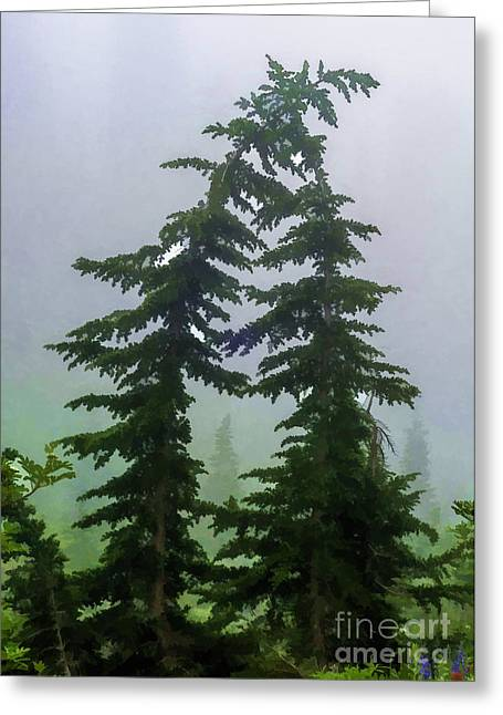 Leaning Trees Greeting Card