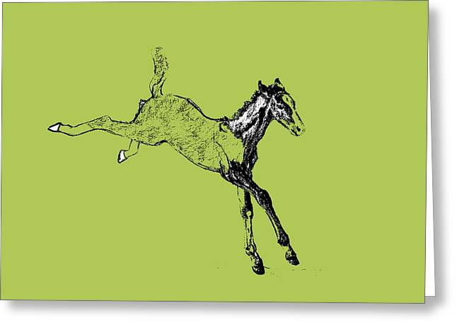 Leaping Foal Greens Greeting Card