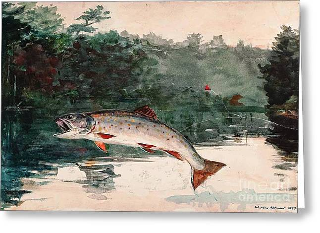 Leaping Trout Greeting Card by Pg Reproductions