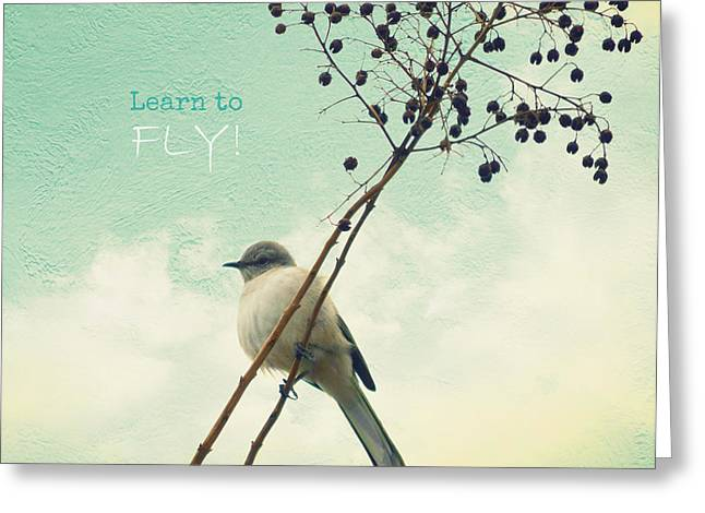 Learn To Fly Greeting Card