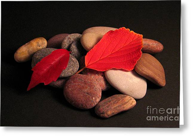 Leaves And Stones Greeting Card by Art Photography