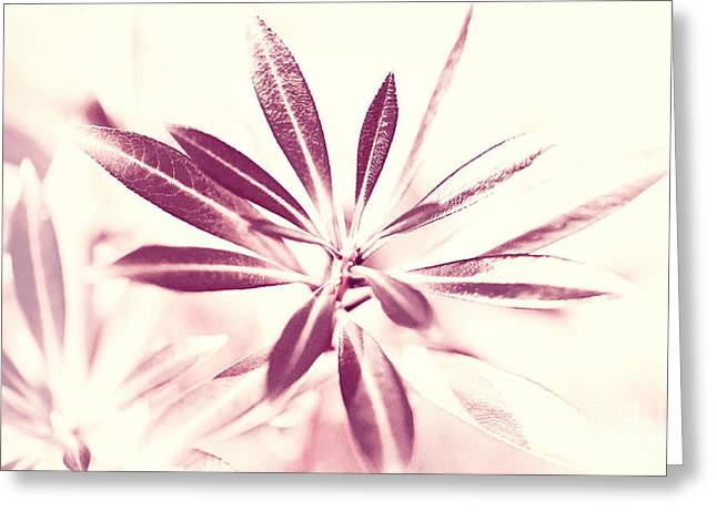Leaves Dancing In The Sunlight Abstract Greeting Card by Natalie Kinnear
