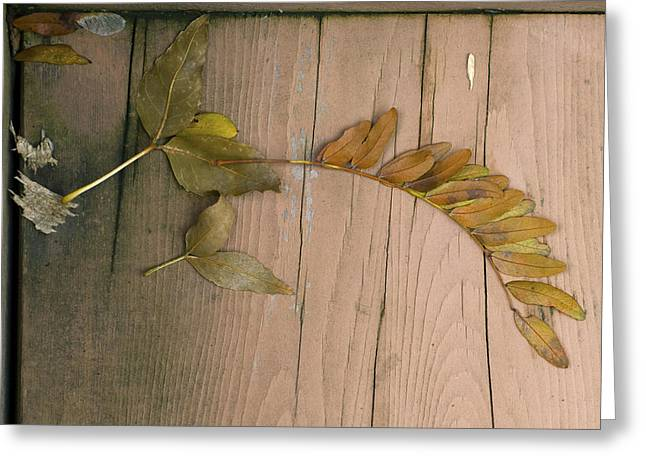Leaves On A Wooden Step Greeting Card