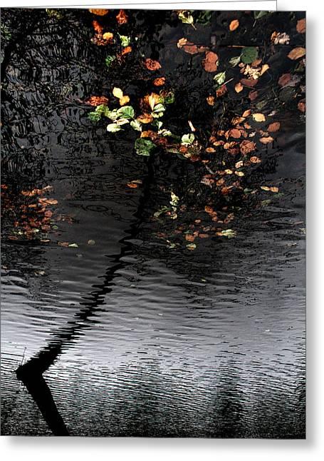 Leaves Unfallen Greeting Card